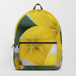 Yellow Tulip Dasystemon Tarda Backpack