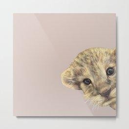 peeping lion cub Metal Print