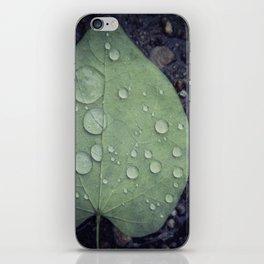 Leave iPhone Skin