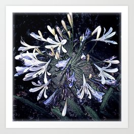 Fairy Flowers Art Print