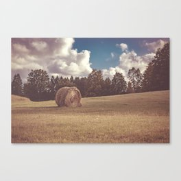 Hay You Canvas Print
