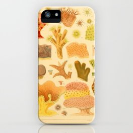 Antique Naturalist Coral iPhone Case