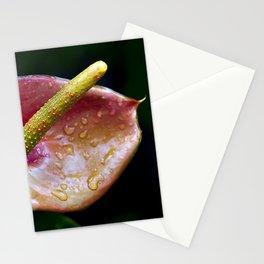 Flamingo Fower,Anthurium Flower. Stationery Cards