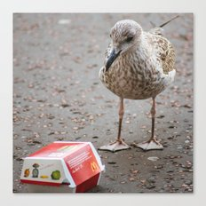 Teenage Seagull with Happy Meal Canvas Print