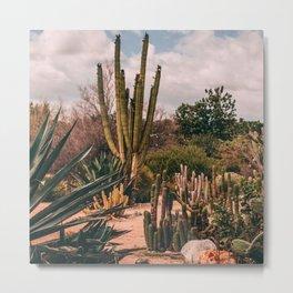 Cactus_0012 Metal Print