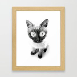 Funny alien cat Framed Art Print