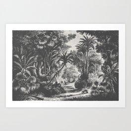 Indian Jungle Art Print