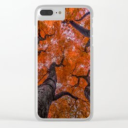 Nishinomiya Japanese Garden - Autumn Trees Clear iPhone Case