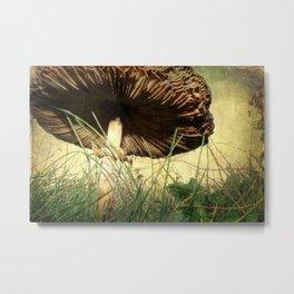 Underneath the Mushroom Metal Print