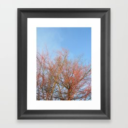 Winter Foliage Framed Art Print