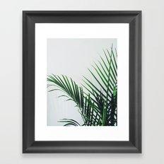 Palm Color Framed Art Print