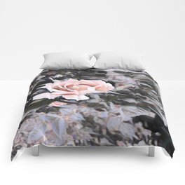 The Rose Comforters