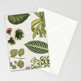 Green Botanical Plants Watercolor Pattern Stationery Cards