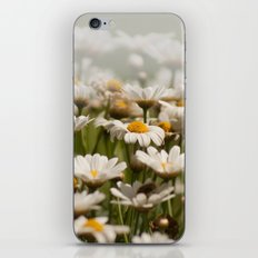 Wave of Daisies 2171 iPhone & iPod Skin