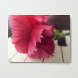 A Soft Pink Melody  Metal Print