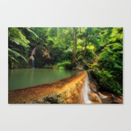 Thermal pool in Azores Canvas Print