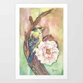 Green and Rose Art Print