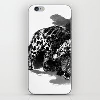 panther iPhone & iPod Skins featuring Panther by Sophie Jean-Paul