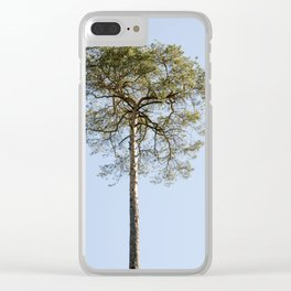 Coniferous Tree Series 1 of 3 Clear iPhone Case