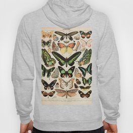 Papillon II Vintage French Butterfly Chart by Adolphe Millot Hoody