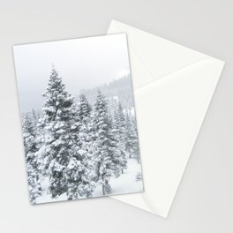 Winter Whites Stationery Cards