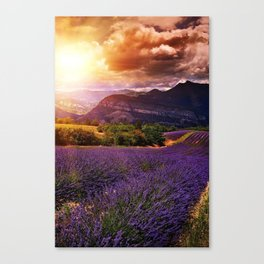 green work Canvas Print