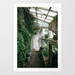Old Greenhouse Art Print