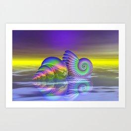 Muscheln Art Print