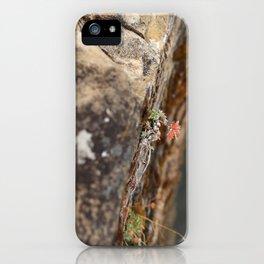 Grande Cache 3 iPhone Case