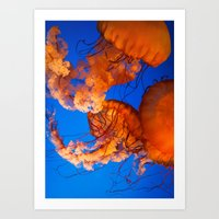 jelly fish Art Prints featuring Jelly Fish by THEPALMER