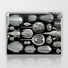Trilobites and Fossils by Ernst Haeckel Laptop & iPad Skin