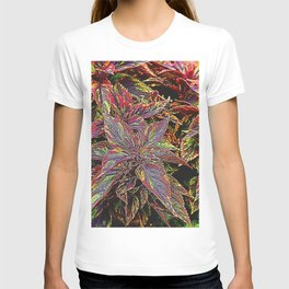 coleus plant leaves in the garden T-shirt