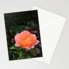 Peach Rose by Teresa Thompson Stationery Cards
