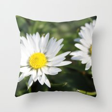 wild white daisy flowers. floral photography. Throw Pillow