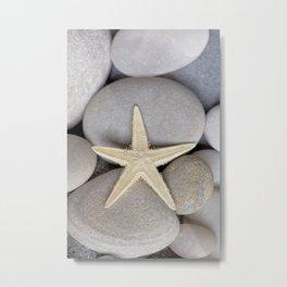 Starfish on pebble Metal Print