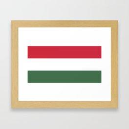 Flag of Hungary Framed Art Print