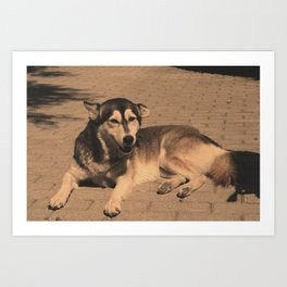Lazy Dawg no.1 Art Print