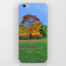 Autumn Upon Us iPhone & iPod Skin