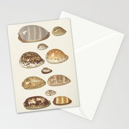 Vintage Seashell Chart II Stationery Cards