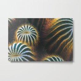 Botanical Gardens Cactus #667 Metal Print
