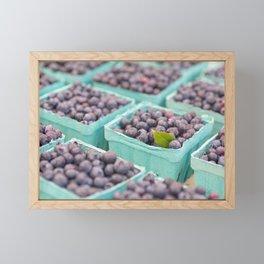 Blueberries at the market Framed Mini Art Print