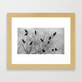 Murder Of Crows - Four Framed Art Print