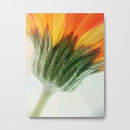 Spring vibes.. Metal Print