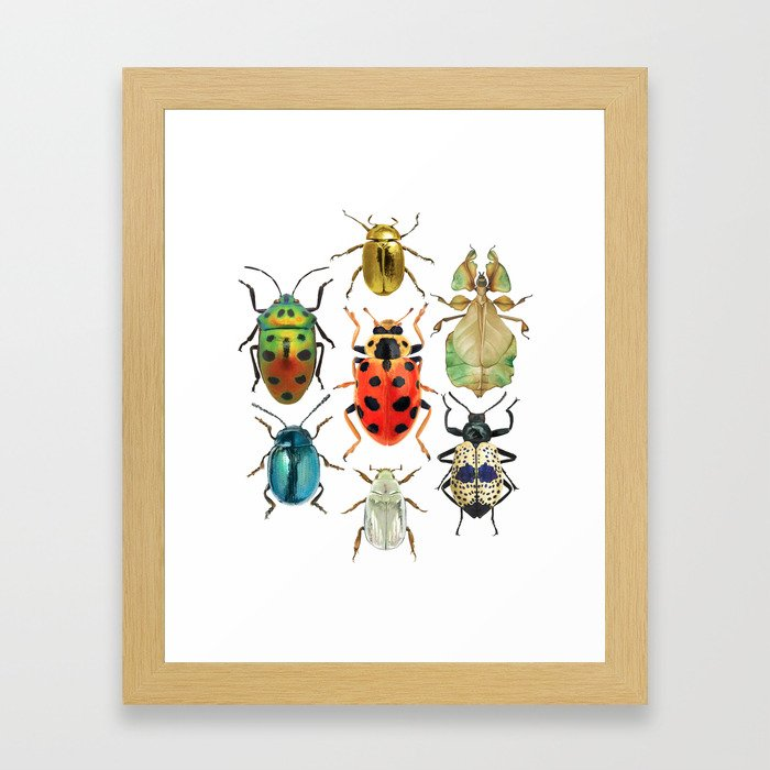 Beetle Compilation Framed Art Print