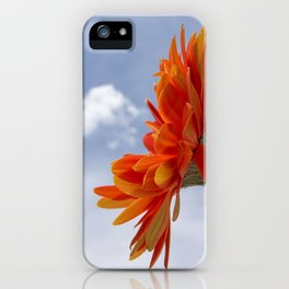 Sweet Delight iPhone Case