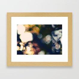 #50 Framed Art Print