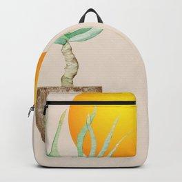 Hand Drawn Set, Bohemian Pot Of Aloe, sunshine, minimal potted plants, No 01 Backpack