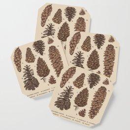 Pinecones Coaster