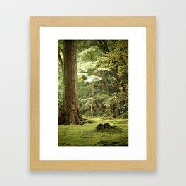 Ohara Jizo, Kyoto Framed Art Print