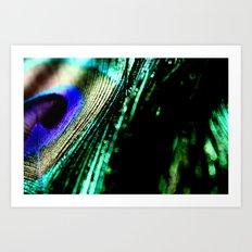 peacock plume Art Print
